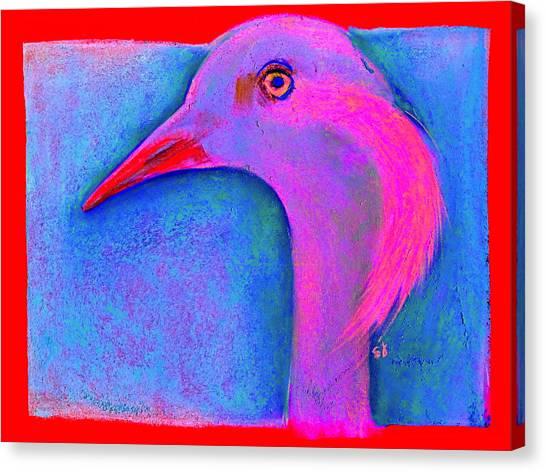 Demoiselles Canvas Print - Funky Demoiselle Crane Bird Art Prints by Sue Jacobi