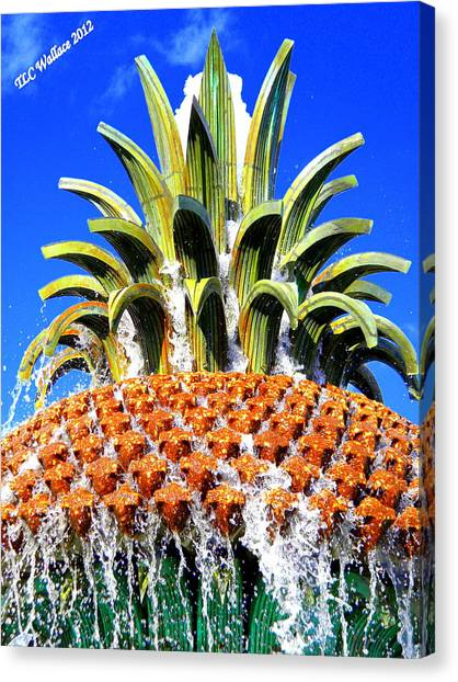 Funky Fountain Canvas Print by Tammy Wallace