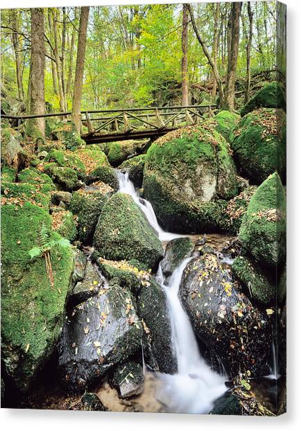 Fallen Leaf Canvas Print - Gaisholle Waterfall In Autumn by Panoramic Images
