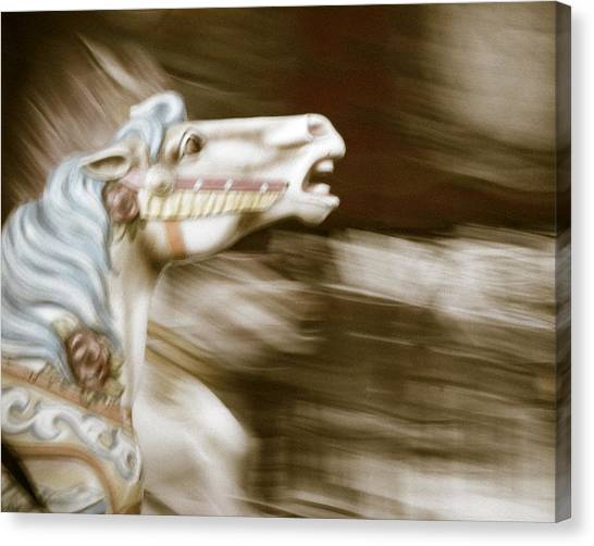 Gallop 4 Canvas Print