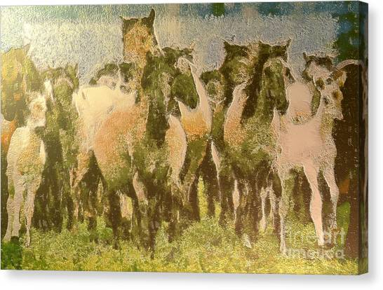 Brown Ranch Trail Canvas Print - Galloping Horse by Odon Czintos