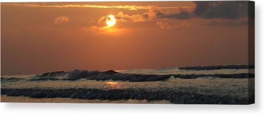Galveston Beach - Texas Canvas Print by Michael Davis