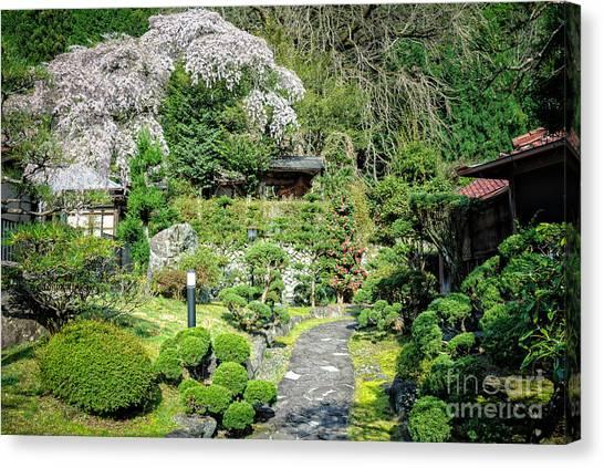 Garden Of A Japanese Ryokan With Sakura - Cherry Blossom Canvas Print