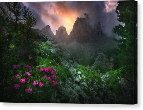 Dolomites Canvas Print - Garden Of Eden #2 by Luca Rebustini