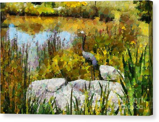Garden Pond Canvas Print by Fran Woods