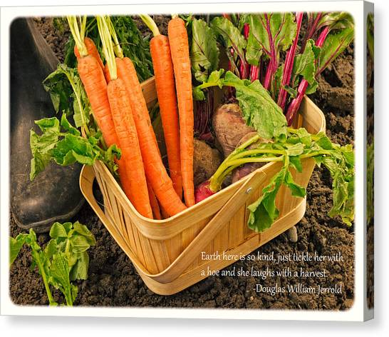 Carrots Canvas Print - Gardening Quote by Edward Fielding