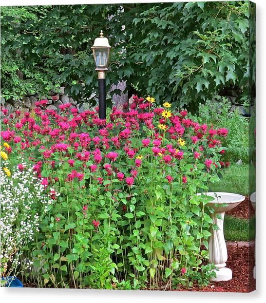 Gardens 112 Canvas Print by Patsy Pratt