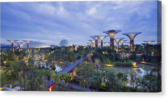 Gardens By The Bay Photograph By Ng Hock How