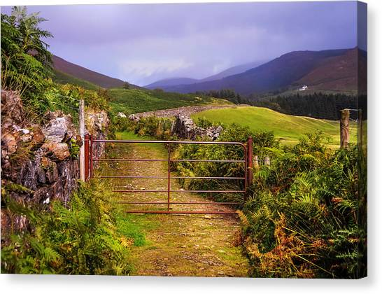 Gates On The Road. Wicklow Hills. Ireland Canvas Print