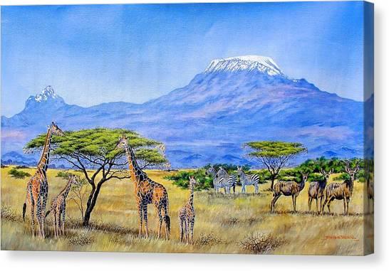Gathering At Mount Kilimanjaro Canvas Print