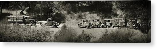 Gathering Black And White Canvas Print