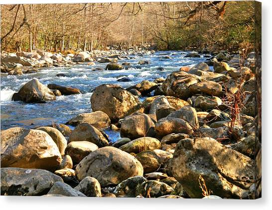 Gatlinberg River Canvas Print