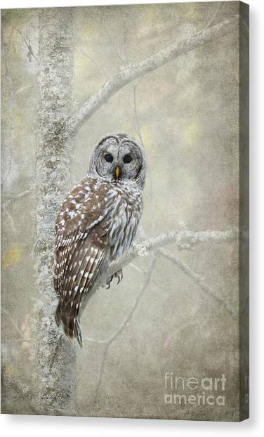 Guardian Of The Woods Canvas Print