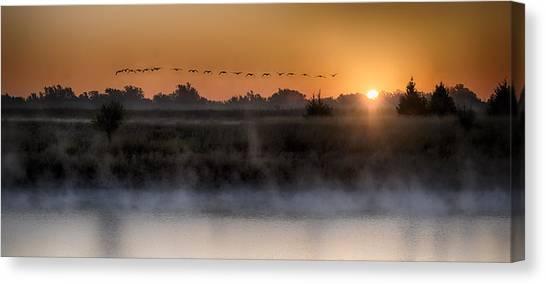 Geese At Sunrise Canvas Print by Garett Gabriel