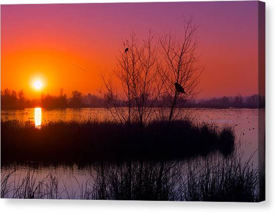 Big West Canvas Print - Geese Flying At Dawn by Kathleen Bishop