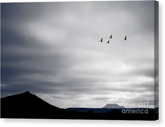 Geese Flying South For Winter Canvas Print