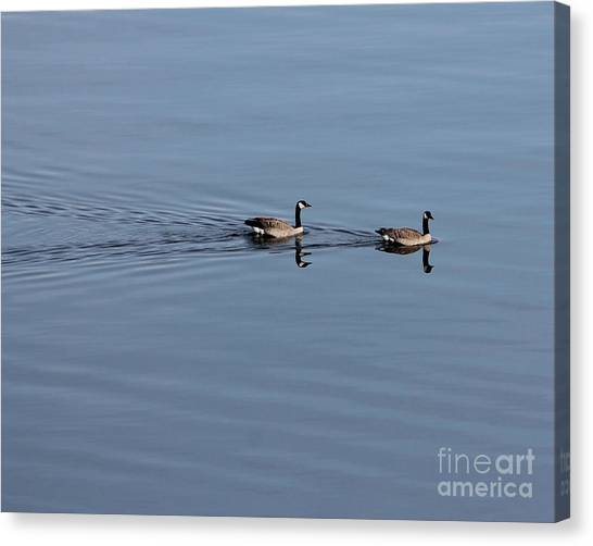 Geese Reflected Canvas Print