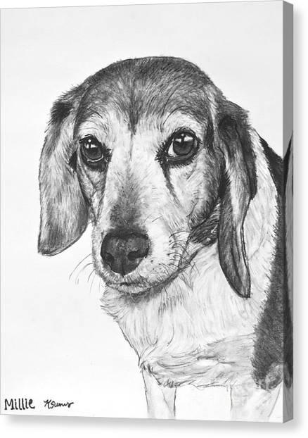 Gentle Beagle Canvas Print