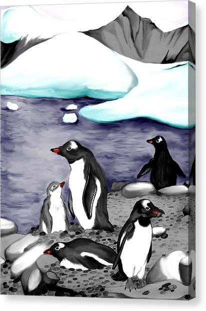 Gentoo Penguins Canvas Print