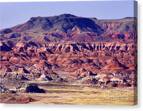 Georgia O'keefe Country - The Painted Desert Canvas Print by Douglas Taylor