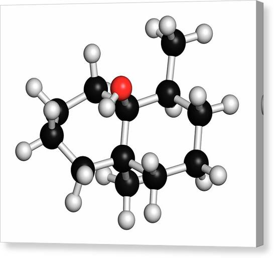 Geosmin Earthy Flavour Molecule Canvas Print by Molekuul/science Photo Library