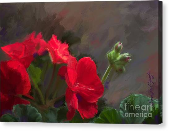 Geranium In Red Canvas Print