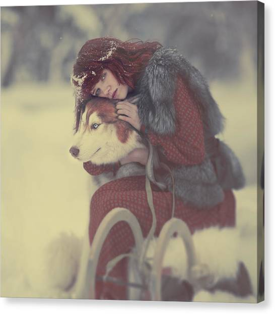 Huskies Canvas Print - Gerda by Anka Zhuravleva