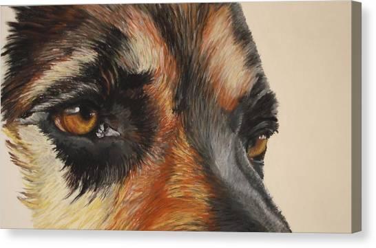 German Shepherd Gaze Canvas Print by Ann Marie Chaffin