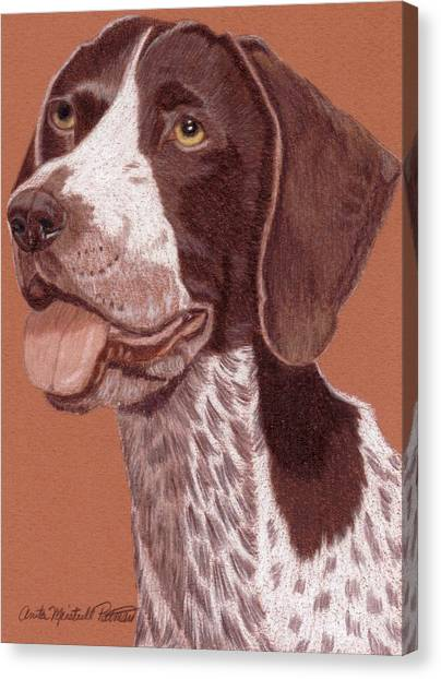 German Shorthair Pointer Vignette Canvas Print