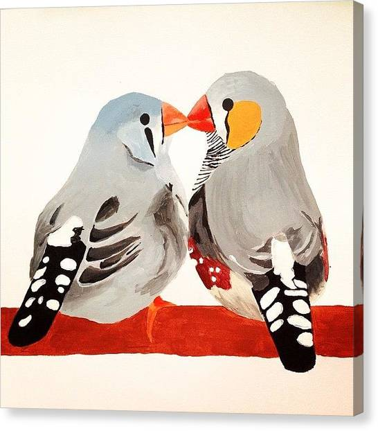 Finches Canvas Print - Lovebirds by Sinead Connell