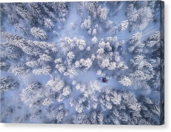 Hoarfrost Canvas Print - Getting The Job Done by Daniel Fleischhacker