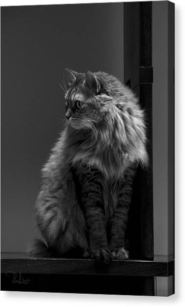 Ghiga Posing In Black And White Canvas Print