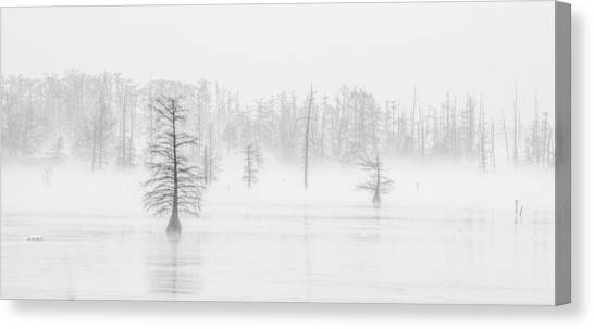 Ghost Trees II Canvas Print