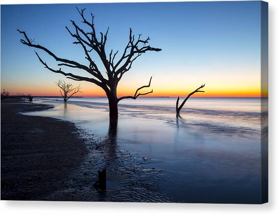 Ghost Trees Of Boneyard Beach 10 Canvas Print