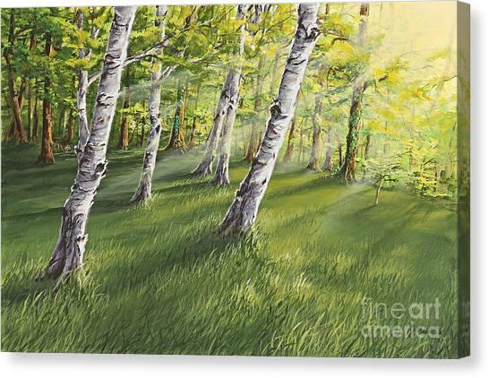 Ghosts In The Woods Canvas Print