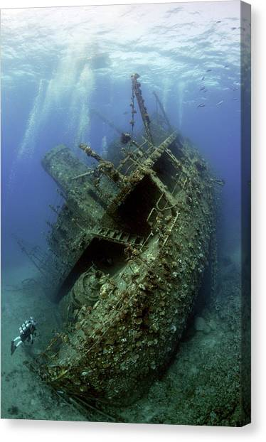 Scuba Diving Canvas Print - Giannis D Wreck. by Dray Van Beeck