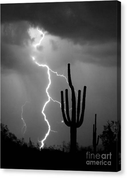 Sonoran Desert Canvas Print - Giant Saguaro Cactus Lightning Strike Bw by James BO Insogna
