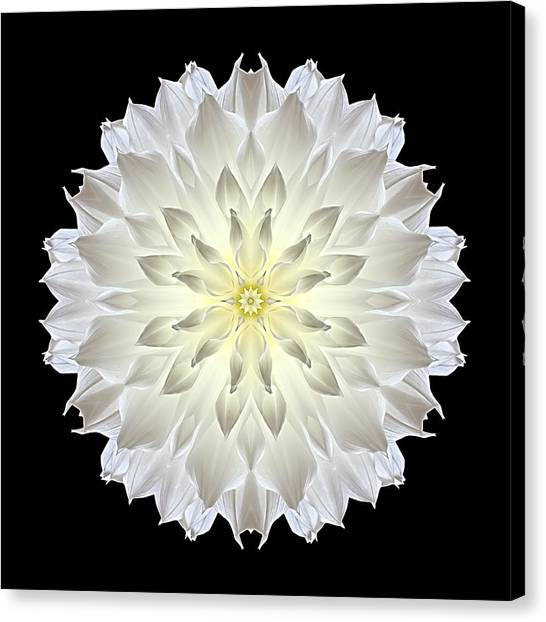 Giant White Dahlia Flower Mandala Canvas Print