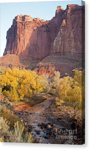 Gifford Farm Capitol Reef National Park Canvas Print