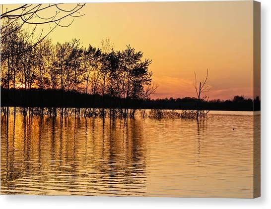 Gilded Sunset Canvas Print
