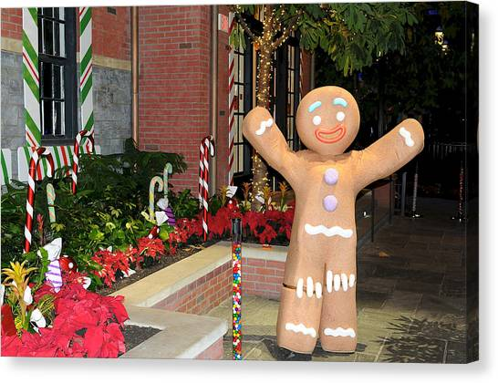 Ginger Bread Man Canvas Print