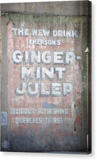 Ginger-mint Julep Canvas Print by Pamela Schreckengost