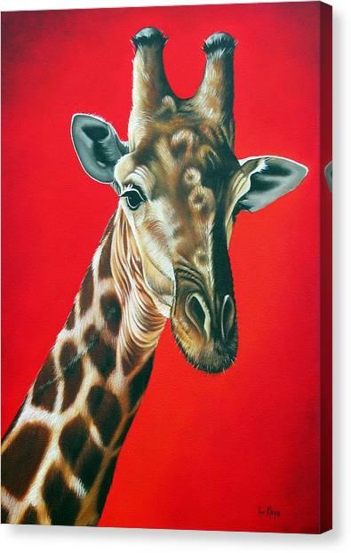 Giraffe Canvas Print by Ilse Kleyn