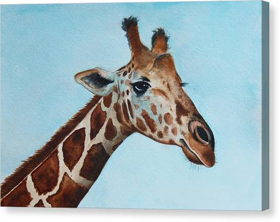 Giraffes Canvas Print - Giraffe by James Zeger