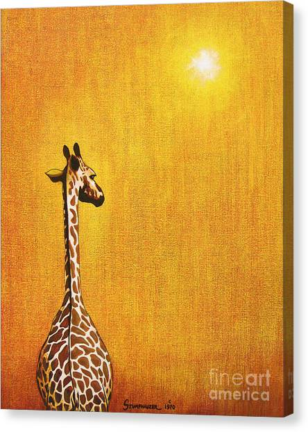 Gold Canvas Print - Giraffe Looking Back by Jerome Stumphauzer