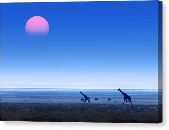 Giraffes Canvas Print - Giraffes On Salt Pans Of Etosha by Johan Swanepoel