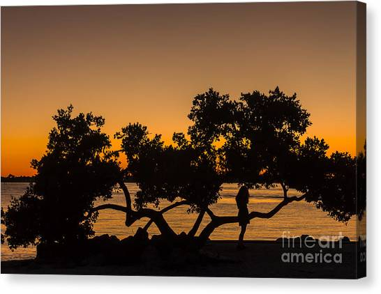 Mangrove Trees Canvas Print - Girl And Tree by Marvin Spates
