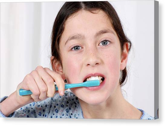 Toothbrush Canvas Print - Girl Brushing Her Teeth by Lea Paterson/science Photo Library