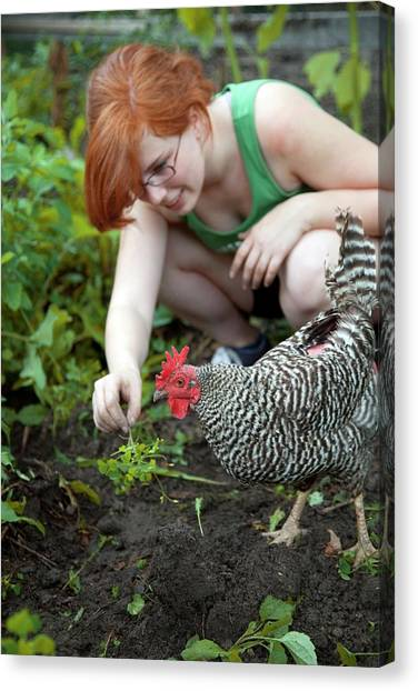 Vegetable Garden Canvas Print - Girl With Free Range Chicken by Jim West