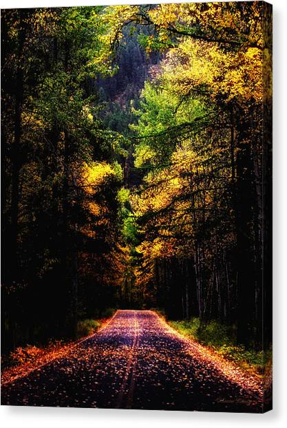 Glacier Fall Road Canvas Print